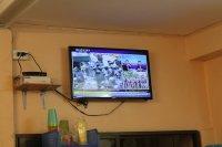 telwizor LCD
